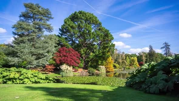 Autumn Landscape In Sheffield Park And Garden Uckfield East