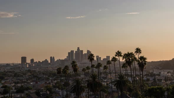 Downtown Los Angeles Skyline And Palm Trees Sunset By Emericlb Videohive