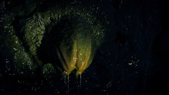 Torch Lights Up Alien Egg Above Dripping Slime by