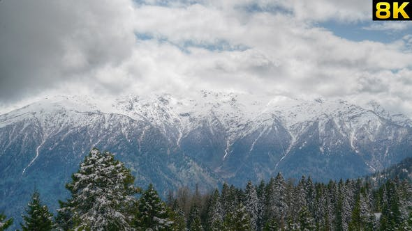 Deep Valley Covered With Pine Forest and Snowy Mountains ...