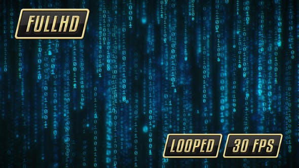 Binary Computer Data Rain by CoolMotion   VideoHive