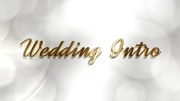 Videohive Wedding Intro 21879185 Free