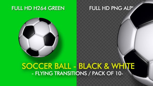 e9ee7f354 Soccer Ball - White and Black - Flying Transition - Pack of 10 by ...