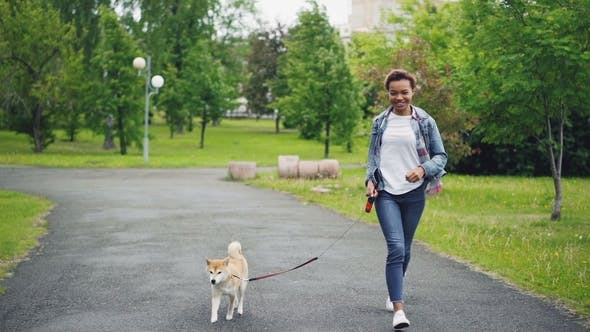 bbb19855a0006 of Happy Mixed Race Girl Running in City Park with Beautiful Small Dog  Enjoying Nature, Freedom and (Stock Footage)