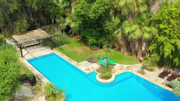 Tropical Garden and The Swimming Pool by Foto-fire | VideoHive