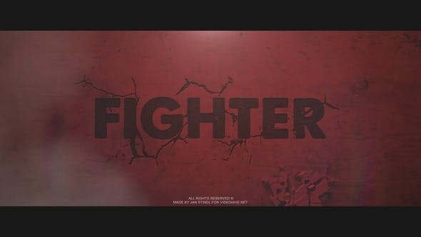 Videohive Fighter Free Download