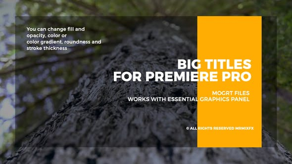 Big Titles I Essential Graphics - VideoHive product image
