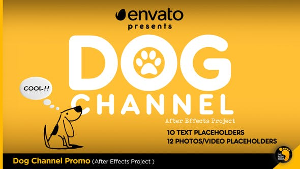 Videohive Dog Channel Broadcast Pack Free Download