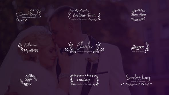 Videohive Wedding Titles and Lower Thirds 24656288 Free