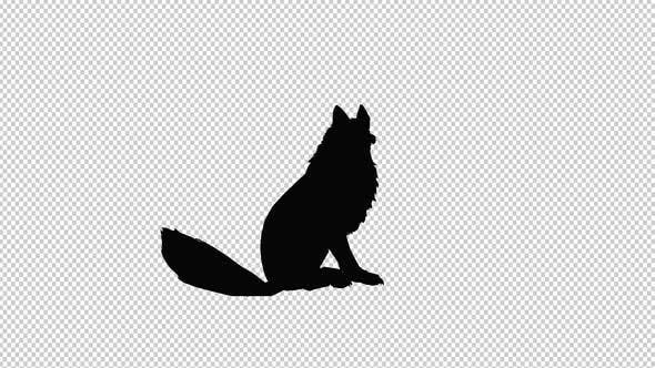 Fox Silhouette By Rajibcou Videohive Choose from 65000+ fox silhouette graphic resources and download in the form of png, eps, ai or psd. usd