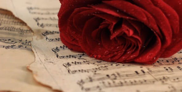 Putting Red Rose onto Vintage Sheet Music by Vintervarg