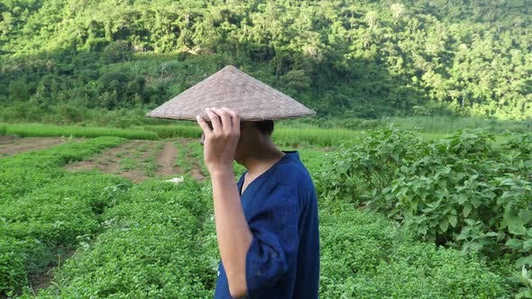 79c5e5fd017 Asian Farmer Wearing Conical Straw Hat (Stock Footage)