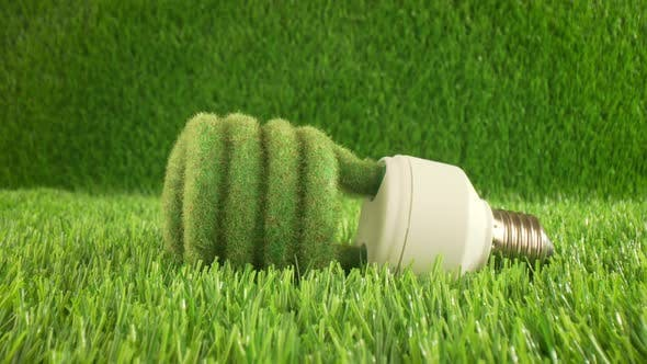 Eco Light Bulb in Green Grass by cookelma | VideoHive