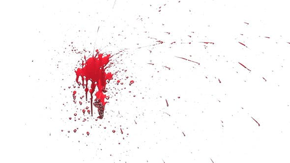 Real Blood And Flesh Splash by Fermu | VideoHive