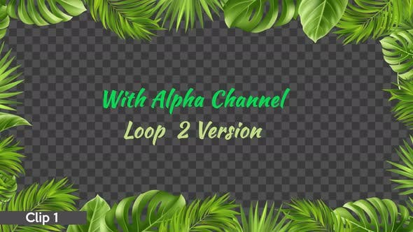 Tropical Leaves Frame 2x1 Ultra Hd By Zeremin Videohive All from our global community of videographers and motion graphics designers. tropical leaves frame 2x1 ultra hd