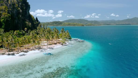 Aerial View Of Cure Small Tropical Ipil Beach Pinagbuyutan