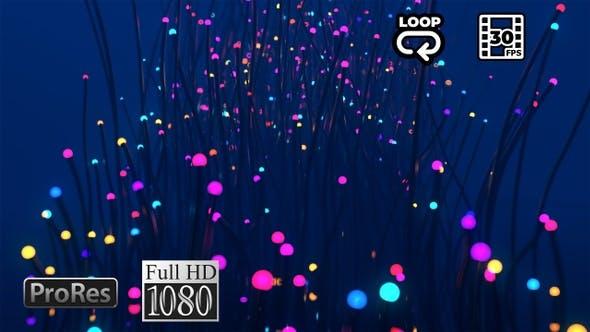Glowing Plants - Fantasy VJ Loop - FullHD by
