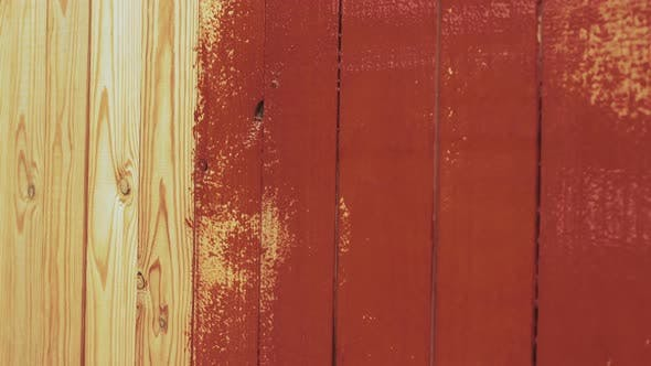 The Painter Paints a Wall or a Fence of Wooden Slats with